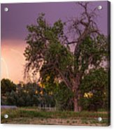 Thunderstorm In The Woods Acrylic Print