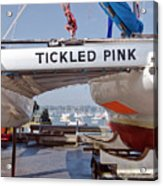 Tickled Pink In Mylor Cornwall Acrylic Print