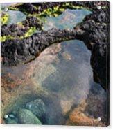 Tidal Pool Acrylic Print
