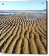 Tidal Trails Acrylic Print