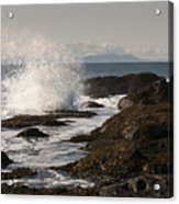 Tide Pool Wave Acrylic Print