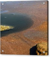 Tide Pool With Coquina Rock Acrylic Print