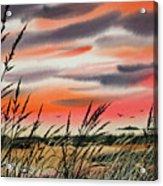Tideland Sunset Acrylic Print