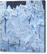 Tidewater Glacier In Glacier Bay Acrylic Print