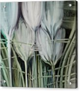 Tied Hands Acrylic Print by Fatima Stamato