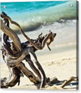 Tied In Knots Acrylic Print