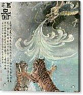 Tiger - 27 Acrylic Print