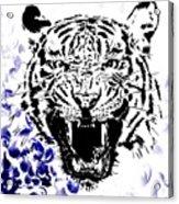 Tiger And Paisley Acrylic Print