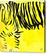 Tiger Animal Decorative Black And Yellow Poster 2 - By Diana Van Acrylic Print