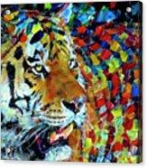 Tiger Big Colors Acrylic Print