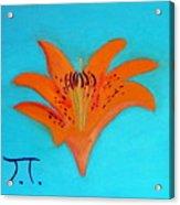 Tiger Lilly Acrylic Print