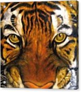 Tiger Mask  Original Oil Painting Acrylic Print