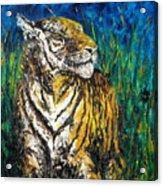 Tiger Night Hunt Acrylic Print