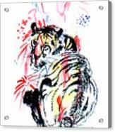 Tiger Siesta Acrylic Print