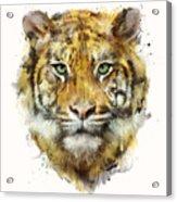 Tiger // Strength Acrylic Print