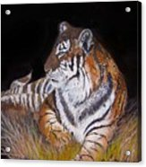 Tiger Tiger  Burning Bright Acrylic Print