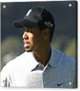Tiger Woods Acrylic Print by Chuck Kuhn