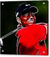 Tiger Woods Acrylic Print by Paul Ward