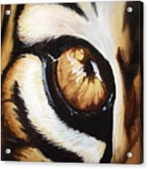 Tiger's Eye Acrylic Print by Lane Owen