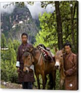 Tigers Nest Guides Acrylic Print by Ken Hayden
