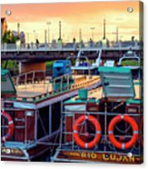 Tigre Delta 018 Acrylic Print