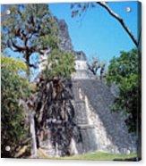Tikal Iv Acrylic Print