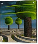 Tilia Arbora Acrylic Print