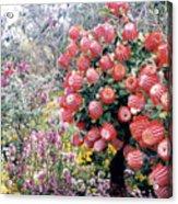 Timberland Acrylic Print