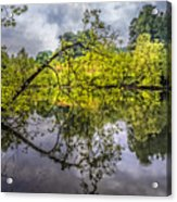 Time For Reflecting Acrylic Print