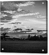 Timeless Sunsets Acrylic Print