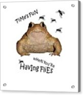 Time's Fun When You're Having Flies Acrylic Print