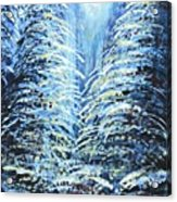 Tim's Winter Forest Acrylic Print