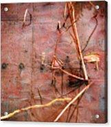 Tin Door - Red Pond Acrylic Print