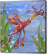 Tiny Anthropomorphic Sea Dragon 2 Acrylic Print