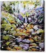 Tiny Brook Acrylic Print