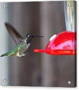 Tiny Flying Machine Acrylic Print