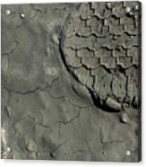 Tire Track In Gray Mud Acrylic Print
