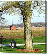 Tree Tire Swing  Acrylic Print