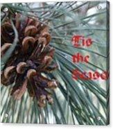 Tis The Seaon Holiday Image Acrylic Print