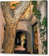 Tlaquepaque Village Tree   Acrylic Print