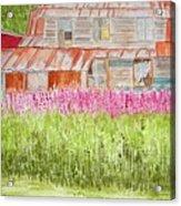 Tlingit Home In Hoonah Acrylic Print