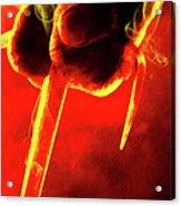 Tmnt 1   -  Raphael Smoky Red. Acrylic Print