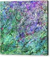 Tmprr11a Acrylic Print