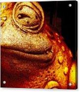 Toad Acrylic Print