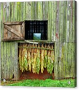 Tobacco Barn Acrylic Print by Ron Morecraft