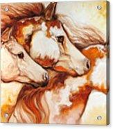 Tobiano Horse Trio Acrylic Print