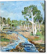 Todd River Acrylic Print