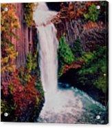 Tokeetee Falls Acrylic Print