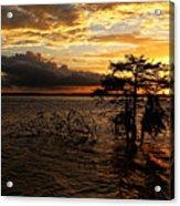 Toledo Bend Sunset Acrylic Print