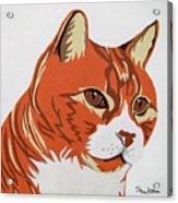 Tom Cat Acrylic Print